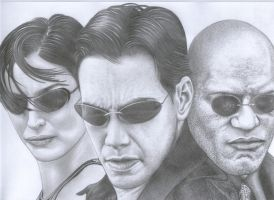 Matrix by costage