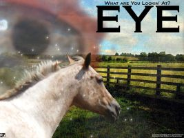 Eye by witismydog
