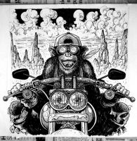Chimp on a Hog by thebiscuitboy