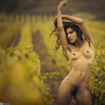 Through the vine by fb101