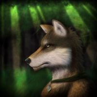 Forest Vagabond by Exoanthrope