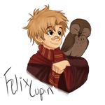Felix Lupin first year by TC-96
