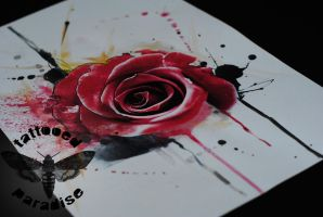 watercolour rose by dopeindulgence