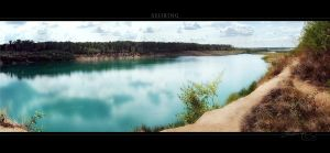 Sehring by Panomenal