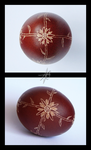 Aster Easter Egg 2015 by AletheiaFelinea