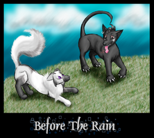 Before The Rain by OpalSkye