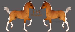 2737 Design Holder by soulswitch