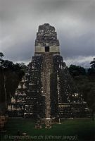 Tikal by iconicarchive