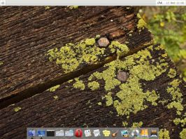 Mac OS X fbpanel config by vermaden