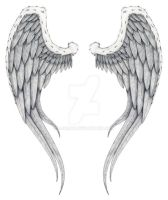 angel wings by Djumah