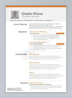 Templates For CV - Programmer by TemplatesForCV