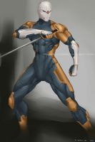 .Commission_Gray Fox. by MadiBlitz