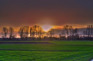 Almost spring by maor