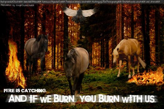 Fire is Catching. by CowgirlSophie28