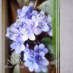 If Not Now, Then When? by Eijaite