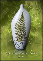 vase with fern leaf by alusiaM