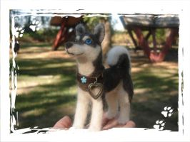 Needle Felted Husky by midnightwolfdesigns
