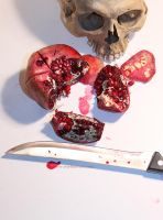 Pomegranate and Skull by wiebkerost