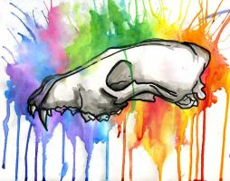 Rainbow Skull by ILoveBialy