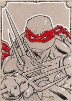 TMNT Raph cardboard by UltimateRubberFool