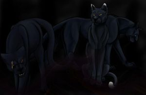 Panther Summons by Howling-Wolf