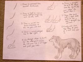 Wolf Paw Tutorial by ArticWolfSpirit