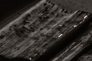 Brown Squeegee by FellowPhotographer