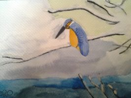 A kingfisher in a winter background.  by Dragonmaster003