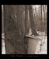 The Trees by Tantas