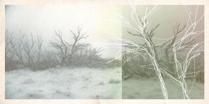 One Hundred Cold Winters by kirrily