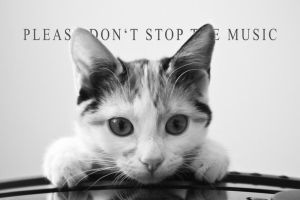 Please don't stop the music by MicroPilot