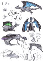 Dragon Sketches by Inquisitive-Soul