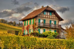 The old house in the vineyard by Bodenlos