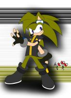 PC - Zach the Hedgehog by AR-ameth