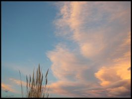 COclouds1 by kelida