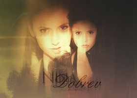 Wallpaper Nina Dobrev by Aki B. by AkiBrowning