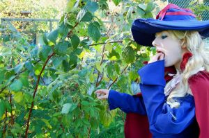 Raspberries - They're used for potions too by haricovert-cosplay