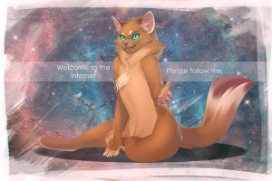 Welcome to the Internet please follow me by kyander