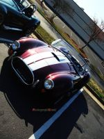 427 Cobra by PhotographiCreed