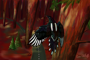 Background Challenge Day 9 - Forest by drosera-sundews