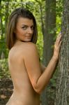 In the Woods by fineimagephotography
