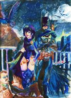 The bat and the raven by 94HONDA