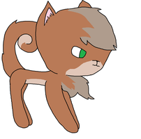 Chomo the Squirrel Cat by SoulTheZorua