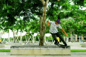 Firdaus - Backside Smithgrind by kostonid