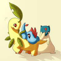 Bayleef, Croconaw and Quilava