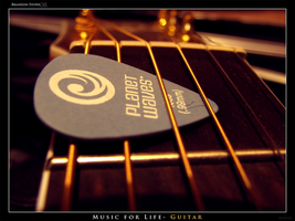 Guitar For Life by Xibris