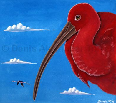 Scarlet Ibis by torreoso