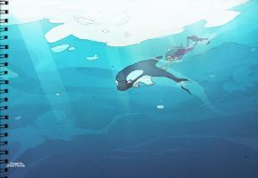 Baby orca and the diver. by faruuk-sama