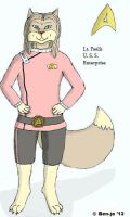 Faelis as the Lt. of the U. S. S. Enterprise by BenjoWolf