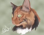 Pet Portrait CM example by LarkoftheRiver